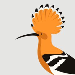 hoopoe bird  vector illustration flat style profile v
