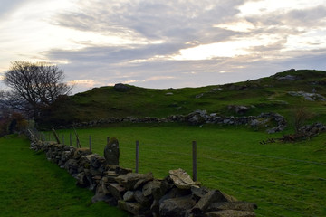 Travel to Norway in the fall. Stone walls of pasture. Hilly landscape.