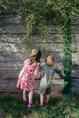 Portrait from behind of two little children (sister and brother) wearing retro vintage clothing, standing together at sunset in front of a wooden garden wall with hanging vines