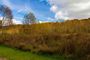 Highbanks Metropark in Autumn, Riverbluff section, Columbus, Ohio