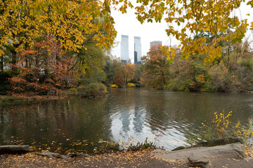 Fototapete - Central Park in New York City autumn foliage