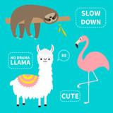 sloth alpaca llama unicorn set cute cartoon funny kawaii