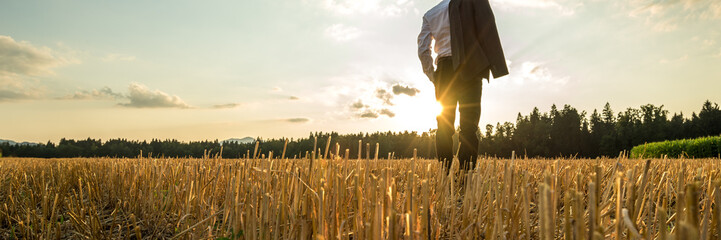 Wide view image of businessman standing in sawn golden field