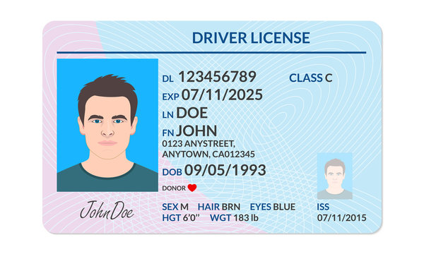 Driver license with male photo. Identification or ID card template. Vector illustration.