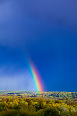 Rainbow over the forest and  stormy blue sky.