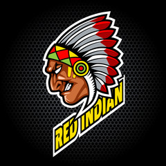 Indian Head from side. Can be used for club or team logo. Vector graphic.