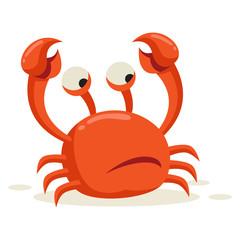 A crab looks alert after seeing predators