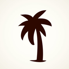 Palm tree. Vector drawing