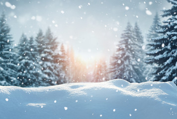 Wall Mural - Winter  background .Merry Christmas and happy New Year greeting card with copy-space. Christmas landscape with snow and fir tree