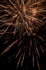 Brightly Colorful Fireworks on black background