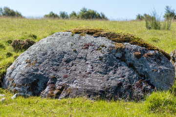 Big Stone in A Green Field