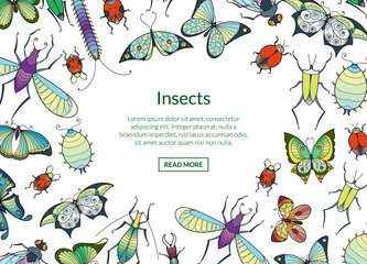 Vector hand drawn insects background with place for text illustration. Butterfly and insect, ladybug and creature