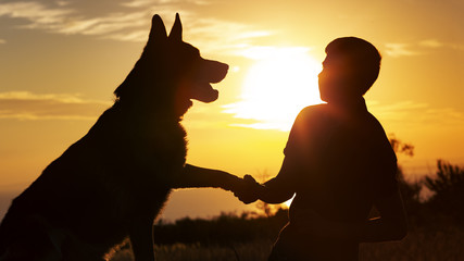 silhouette of a man shaking paw of dog in a field at sunset, boy with a pet walking on nature, concept of friendship of animals and people