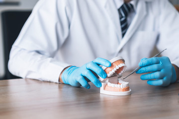 Dentist using tooth jaw model