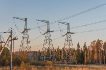 high-voltage power lines in the forest among the trees
