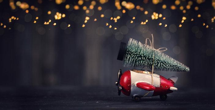 Weihnachtstanne auf dem Holzflieger