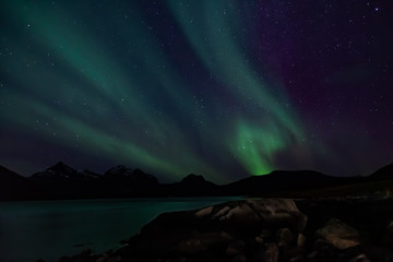 Amazing Aurora Borealis in North Norway (Kvaloya), mountains and sea in the background