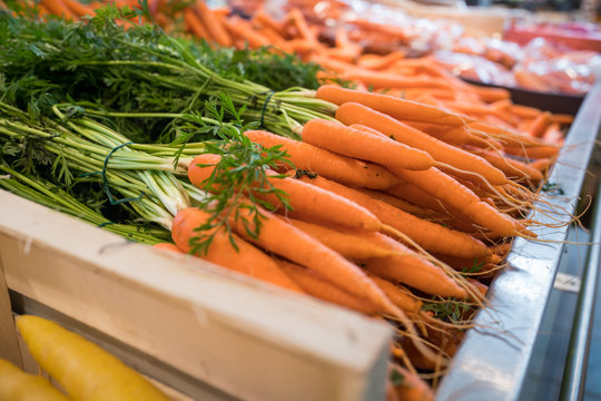carottes sur le marché
