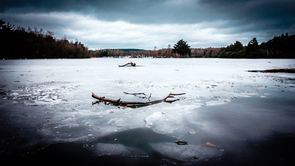 Wide view of frozen lake with branches on the ice