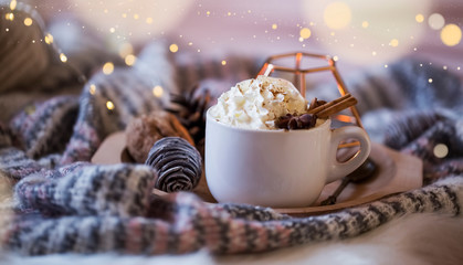 Festive winter hot chocolate with cream and cinnamon