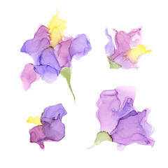 Abstract color alcohol ink flowers isolated on white background .