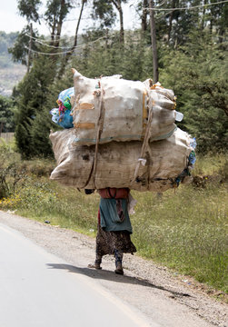 A woman in Ethiopia carries a massive load on her back.