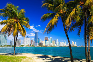 Skyline view of Miami Florida Wall mural