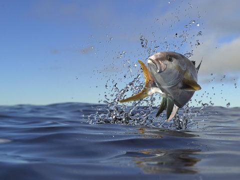 Yellowtail amberjack fish top of ocean surface 3d render