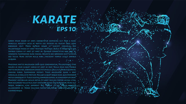 Karate of blue glowing dots. Particle karate.