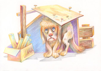 Pencil drawing. Illustration for children. Image of animals with colored pencils. Homeless dog hiding from the weather.