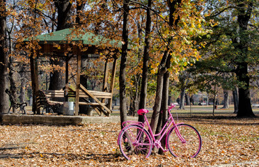 Autumn pink bicycle