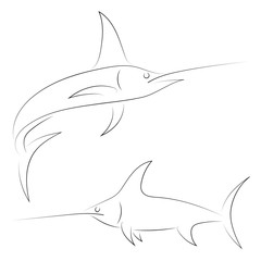 Black line swordfish on white background. Hand drawing vector graphic fish. Sketch style. Animal illustration.