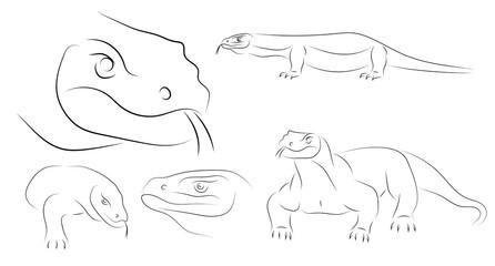 Running black line varan, dragon Komodo, on white background. Sketch style. Vector graphic icon animal.