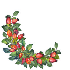 Watercolor border wreath with red rosehips berries and green leaves. Hand drawn illustration on white background.