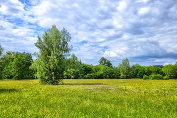 Green meadow with clouds in Aueweiher Park in Fulda, Hessen, Germany