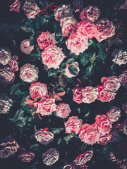 Flowers wall background with amazing roses on vintage tone