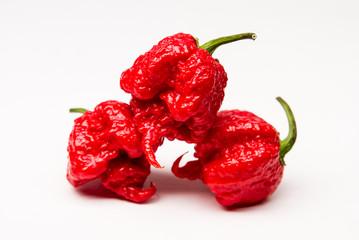 Carolina Reaper - Super-hot Pepper