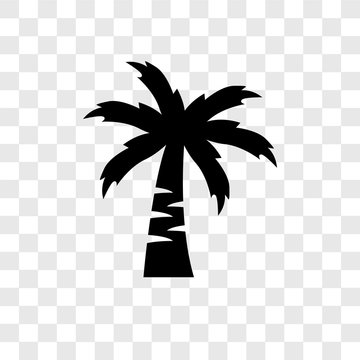 Coconut tree vector icon isolated on transparent background, Coconut tree transparency logo design