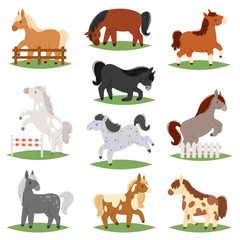 Cartoon horse vector cute animal of horse-breeding or kids equestrian and horsey or equine stallion illustration childly animalistic horsy set of little pony character isolated on white background