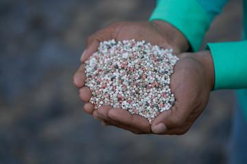 Bulk Blend Fertilizer in farmer hands.