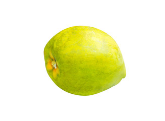 Canistel or Egg fruit isolated on white background with clipping path ( Tiesa, Yellow sapote, Canistelsapote, Chesa ,Laulu lavulu , Lawalu ,Pouteria campechiana)