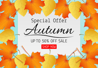 Paper art of Autumn sale background with maple leaf for shopping promotion. Vector illustration
