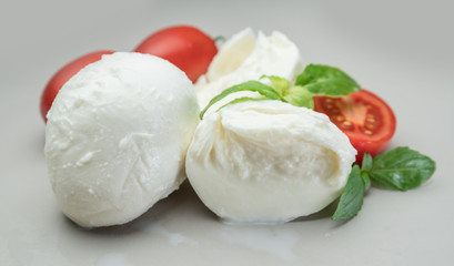 Traditional Italian mozzarella cheese with herbs and tomatoes on gray background.