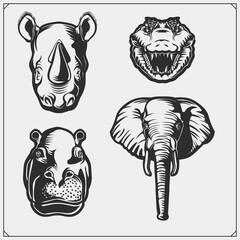 Set of african and jungle animals. Crocodile, hippo, elephant and rhino.