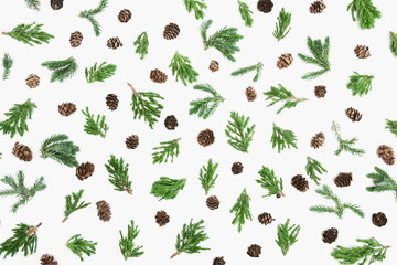 Christmas composition. Green coniferous tree branches and cones on white background. Christmas, New...