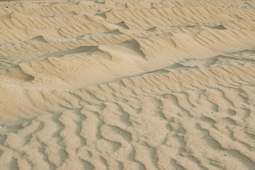 River building sand patterns from the wind, natural background. Shallow depth of focus in the center.