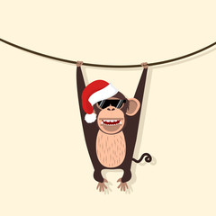 monkey wear hat christmas climbing the vine
