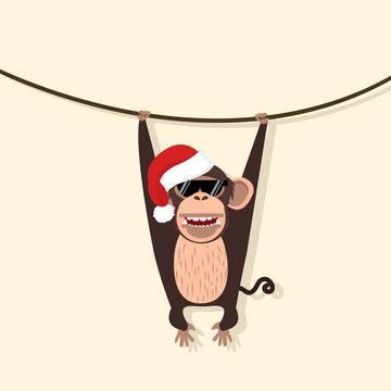 monkey wear hat christmas climbing the vine