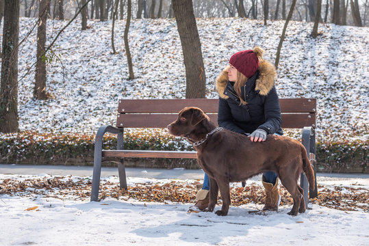 A beautiful young blond-haired woman is having fun with her big brown labrador dog in the park in winter
