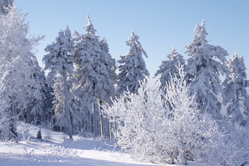 Winter landscape on the Feldberg in the Taunus, Germany.